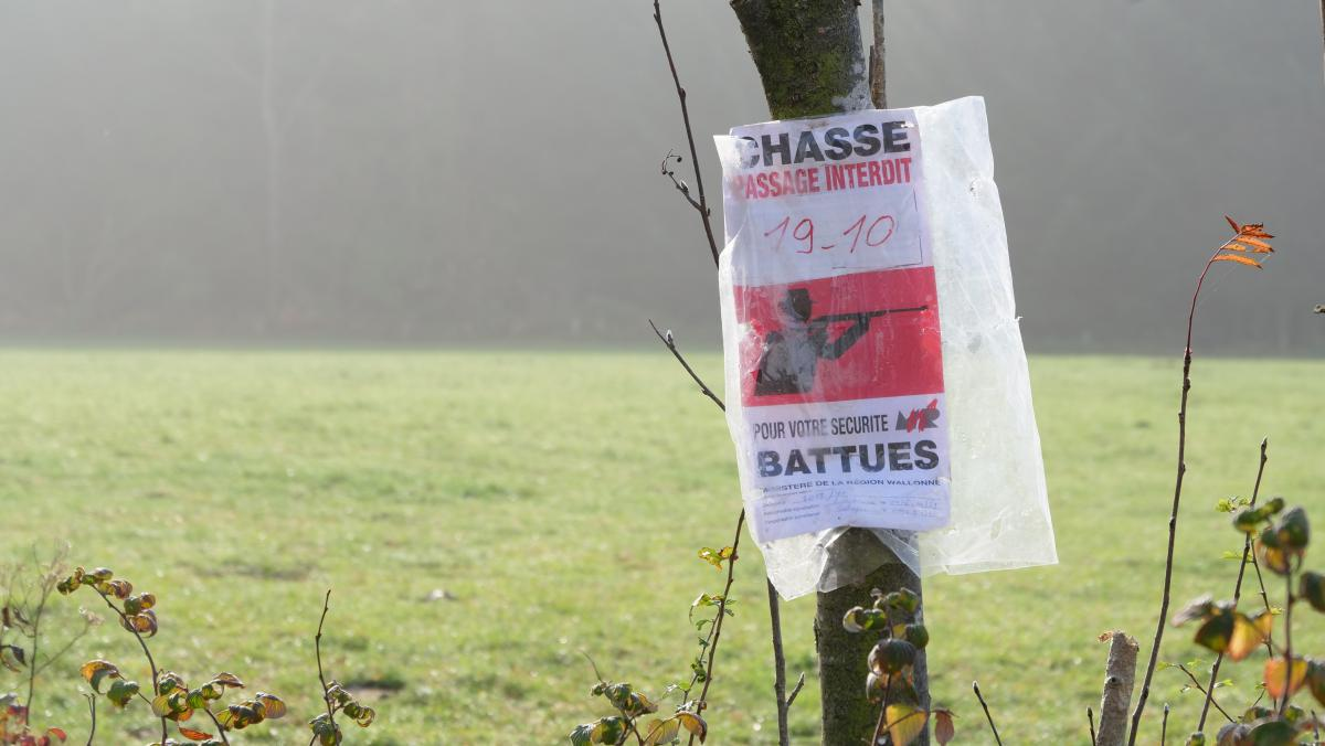 affiche-chasse-battue-attention.jpg