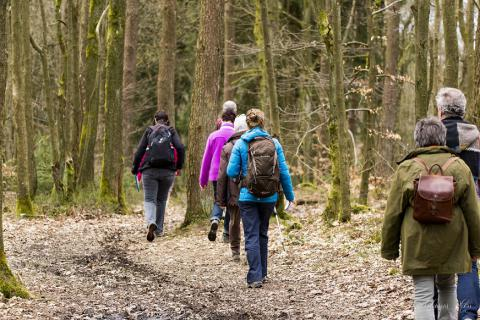 Internationale Wandeltocht van Stavelot