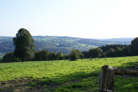 Balade nature guidée : Balade nature et paysagère