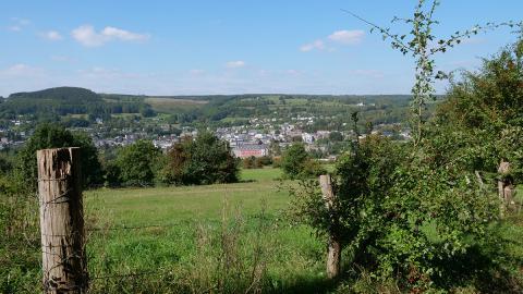 Balade nature guidée : Découvrir les hauteurs de Stavelot