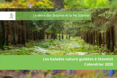 Balade nature guidée - Le Mont des Brumes et la He Stienne