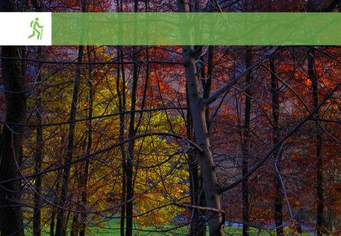 Balade Nature Guidée : Les Couleurs de l'automne