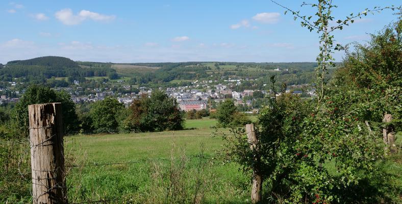Vue-stavelot-abbaye-route-de-somagne champs-végétation (11)